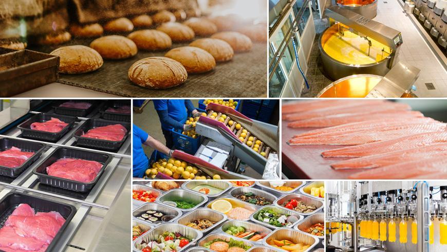 FOOD-PROCESSING RANGE | NTN SNR